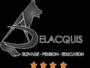 Logo transparent avec contour 1 300x227 - Accueil