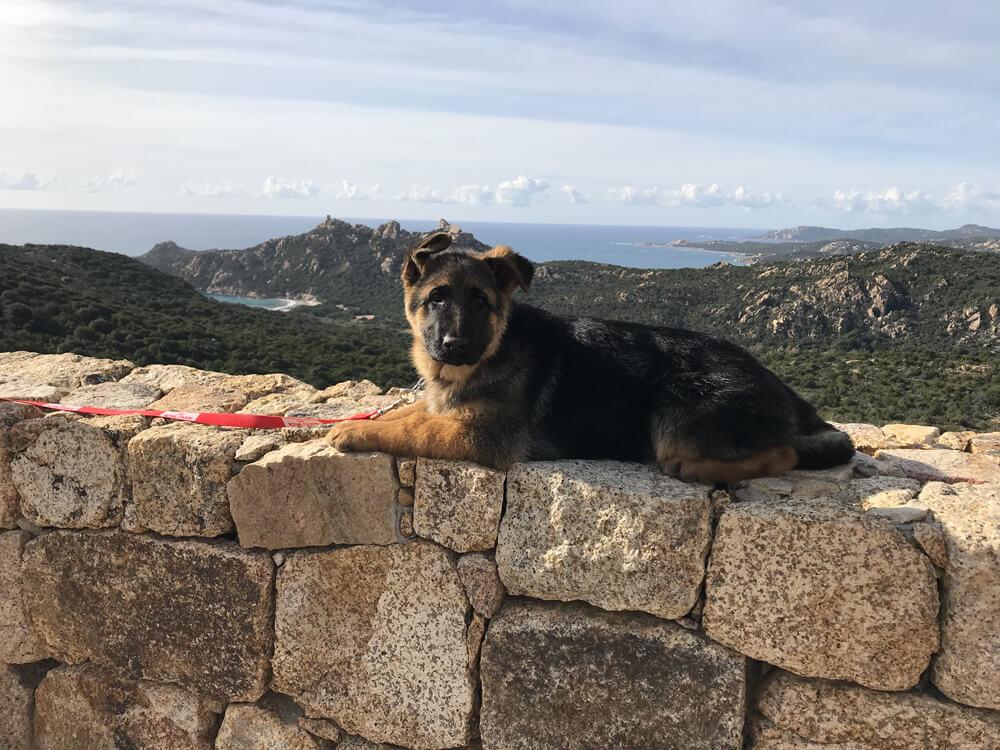 Photo 7 - La Corse en hiver par O'iris des Nacrés de Vénus